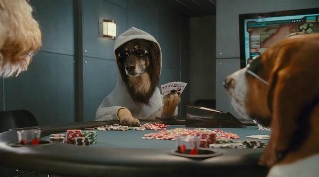 «Кошки против собак: Месть Китти Галор»